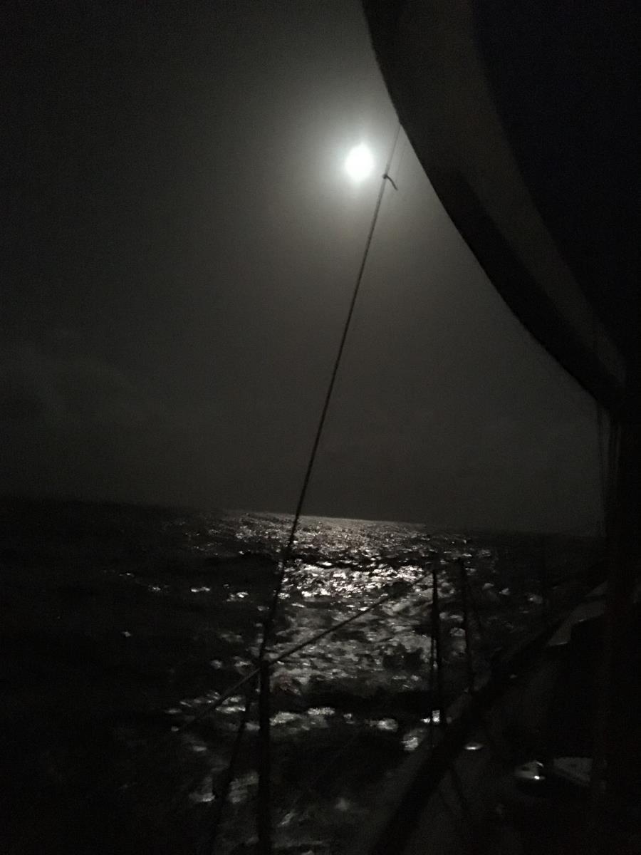 Vi hade fantastiska nätter med magiskt månsken.