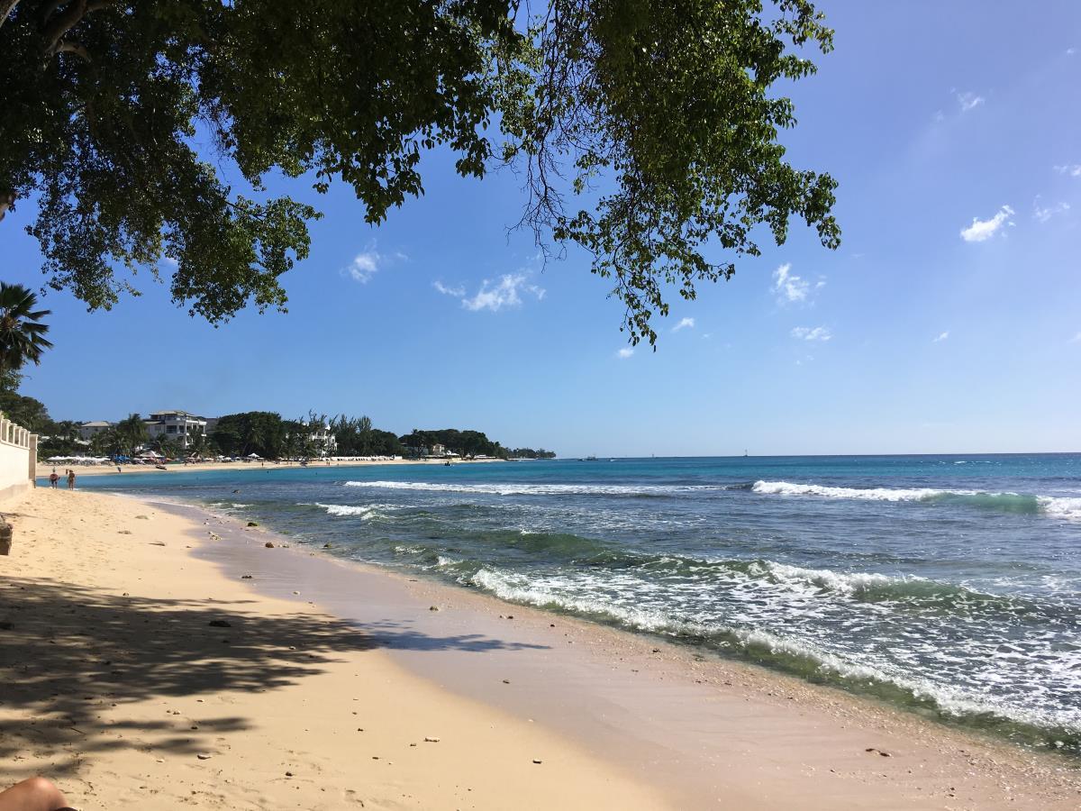 Badutflykt på Barbados med S/Y Yin Yang.