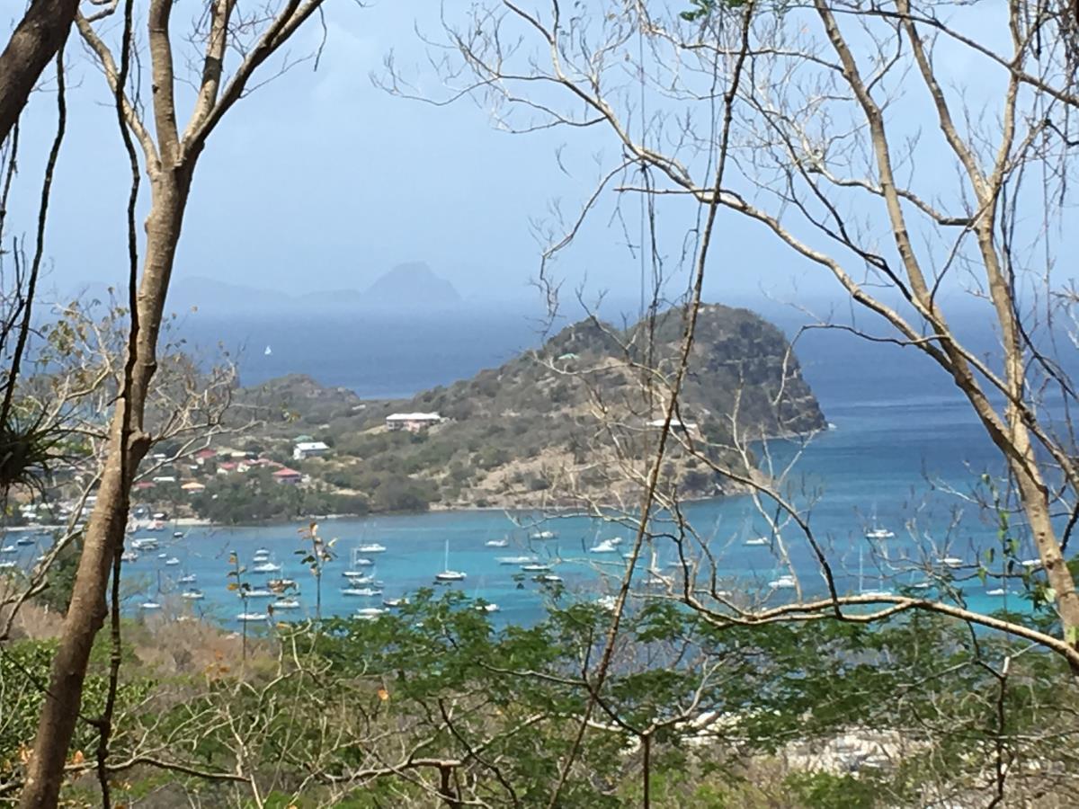 Utsikt över Tyrell Bay, Carriacou.