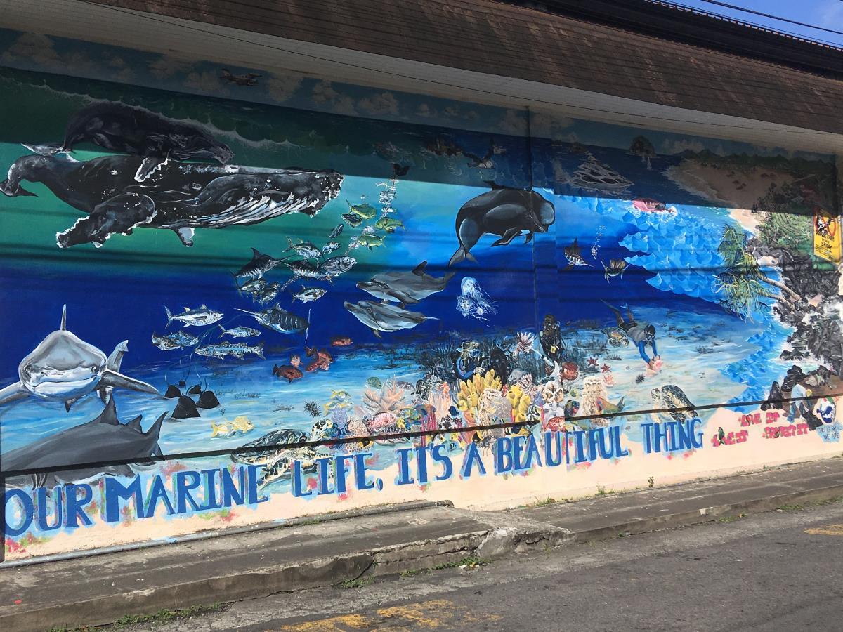 Coola väggmålningar i Kingstown.