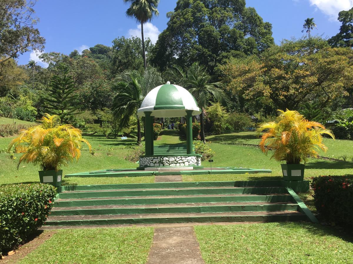 Otroligt vackert i Botaniska trädgården i Kingstown.