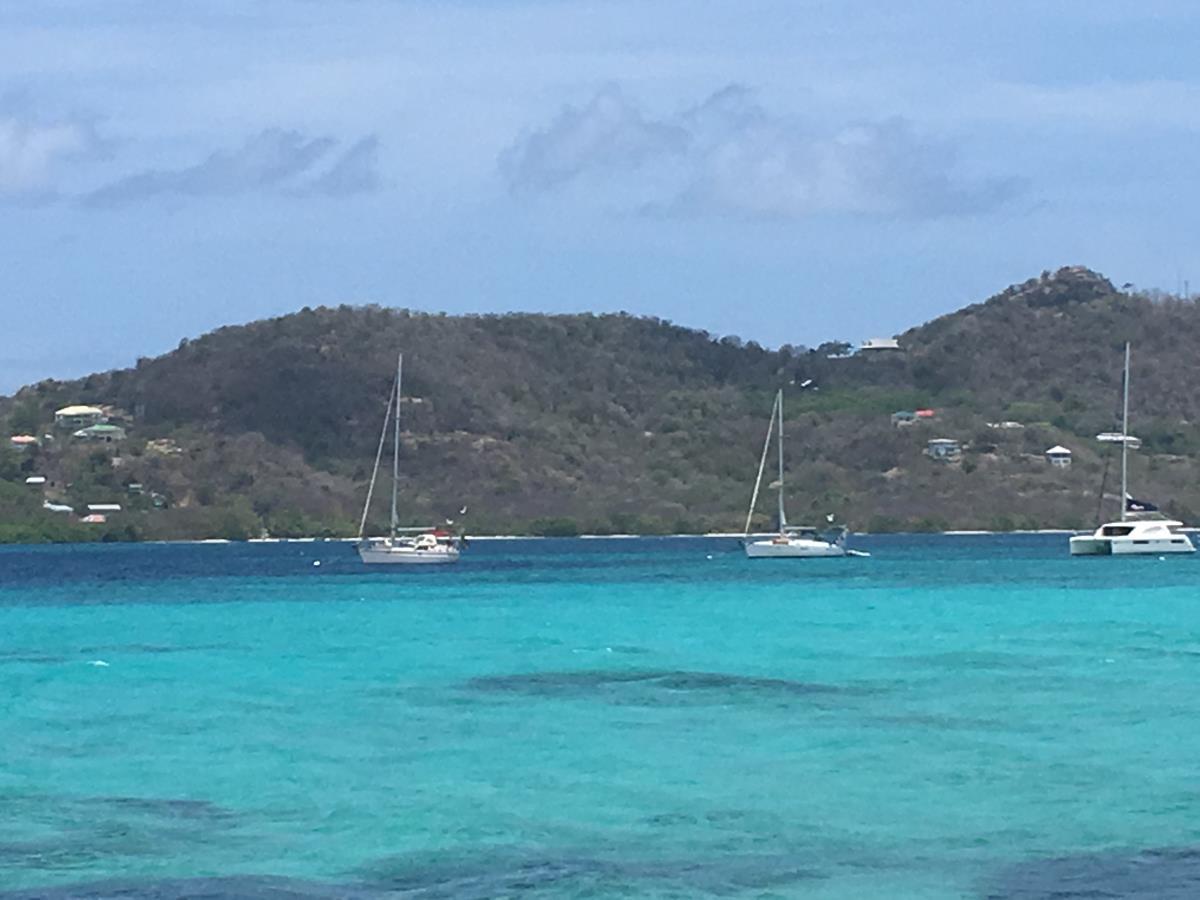 S/Y Looma IV på boj utanför Sandy Island, Carriacou.